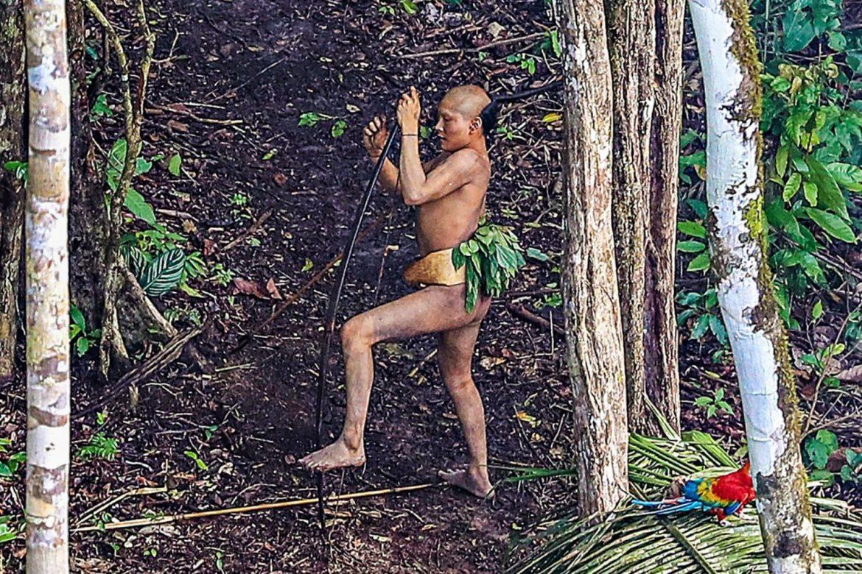 вакансии дикие лесные племена амазонки интересно посмотреть